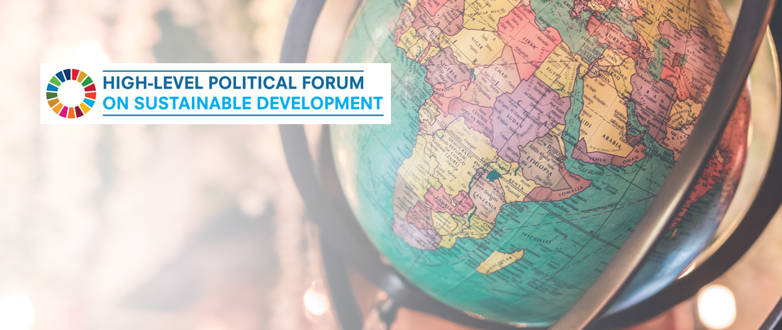 Driving Transformative Change: Foreign Affairs and the 2030
