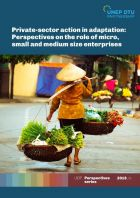 Private-sector action in adaptation: Perspectives on the role of micro, small and medium size enterprises