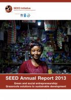 SEED Annual Report 2013