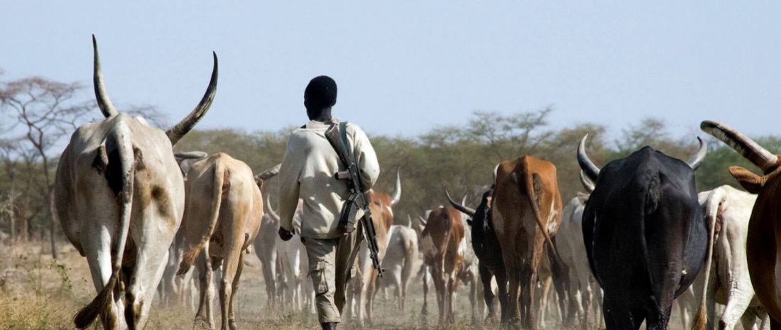 Protection of livestock and livelihoods