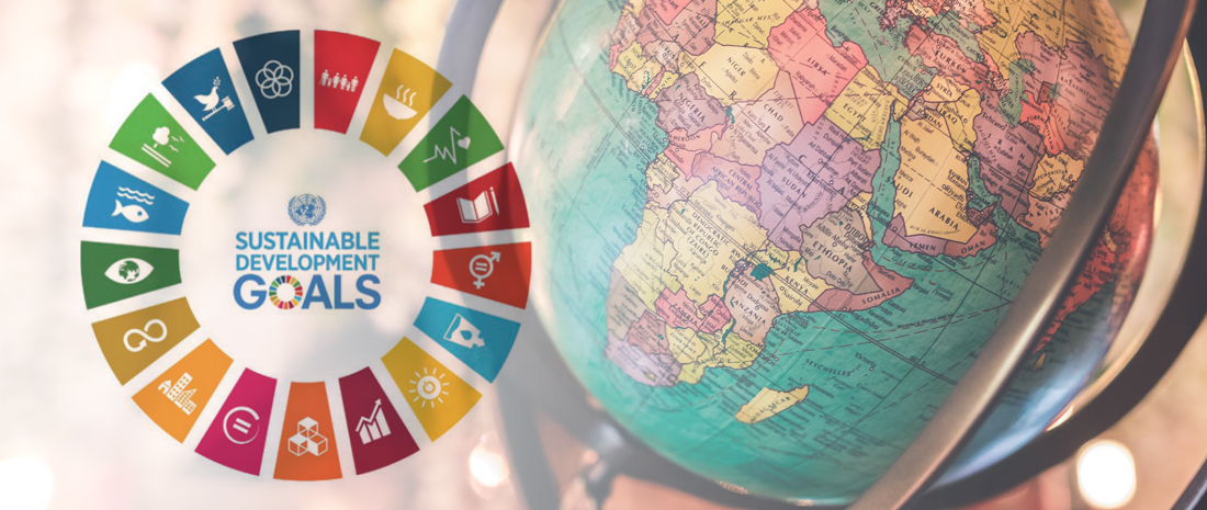 A Foreign Policy Perspective On The Sustainable Development Goals