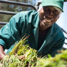 SEED South Africa Winner 2014: Botanica Natural Products
