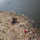 Polluted river banks, India