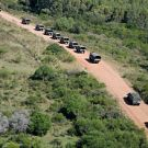 Column of army vehicles in practice