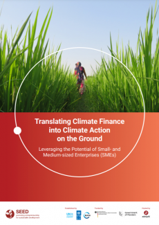 cover: Translating Climate Finance into Climate Action on the Ground Leveraging the Potential of Small- and Medium-sized Enterprises (SMEs)