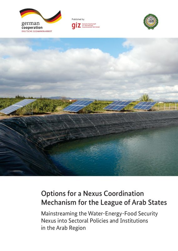 Options for a Nexus Coordination Mechanism for the League of Arab States - adelphi-GIZ