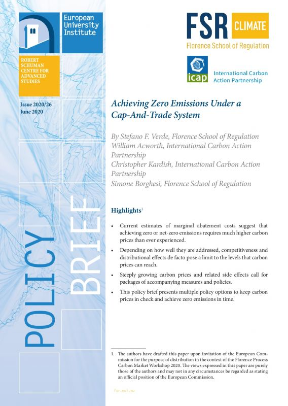 Cover Achieving zero emissions under a cap-and-trade system
