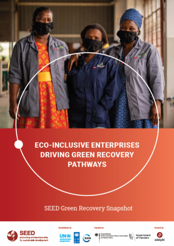 Cover Eco-inclusive Enterprises Driving Green Recovery Pathways