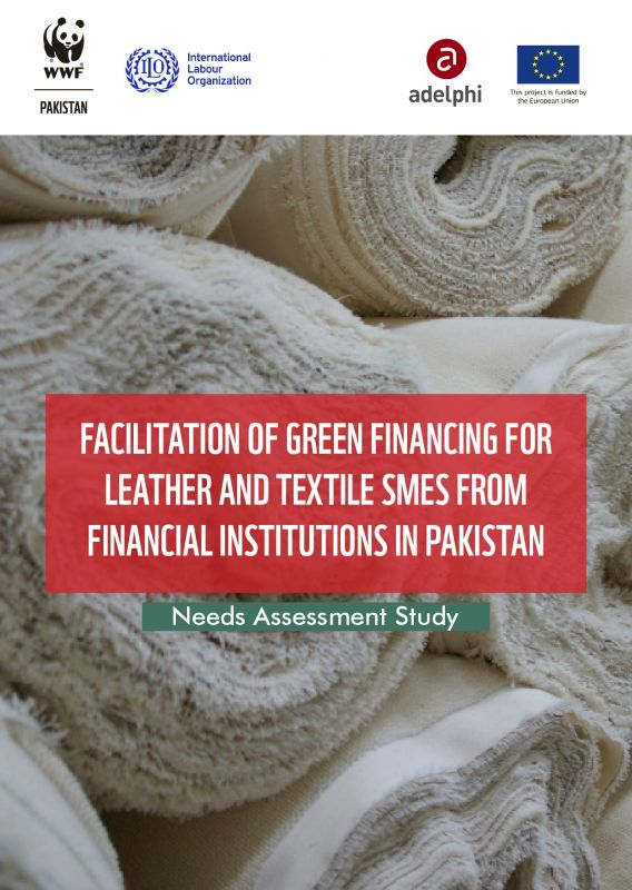 Cover Green financing for leather and textile enterprises in pakistan