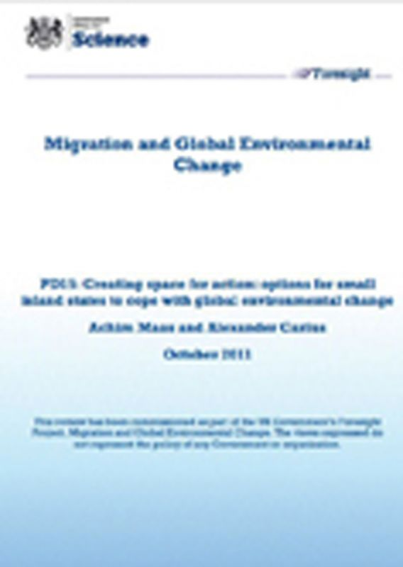 Creating Space for Action: Options for Small Island States to Cope with Global Environmental Change