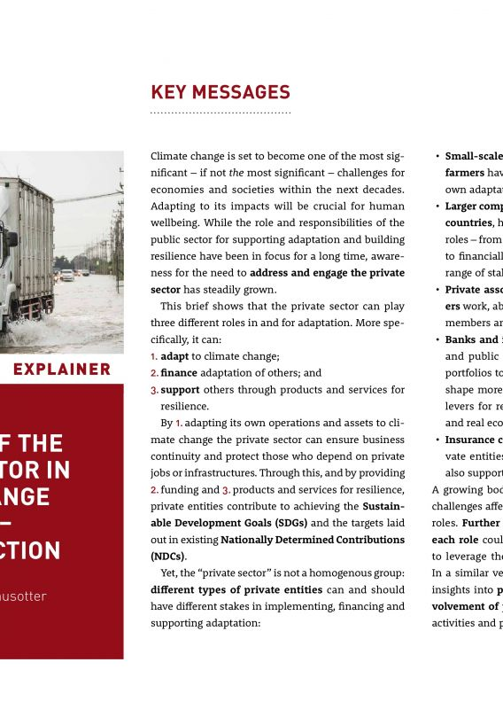 The Roles of the Private Sector in Climate Change Adaptation - adelphi