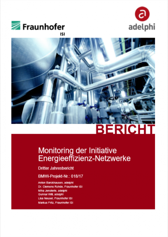 Monitoring of the Initiative Energy Efficiency Networks - Third Annual Report