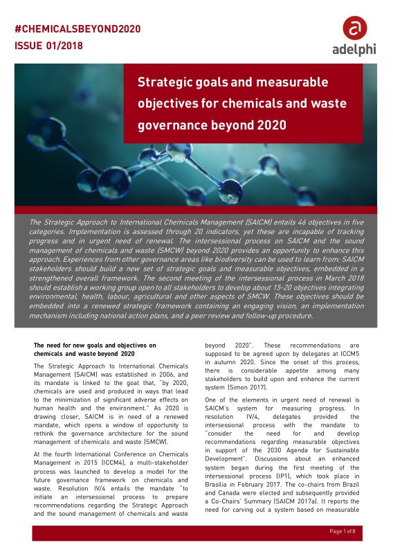 Strategic goals and measurable objectives for chemicals and waste governance beyond 2020